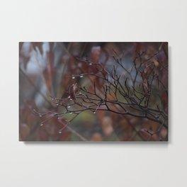 Rain(y) Fall 2 Metal Print