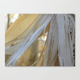 Out of Season Canvas Print
