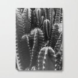 Natural Background 05 Metal Print