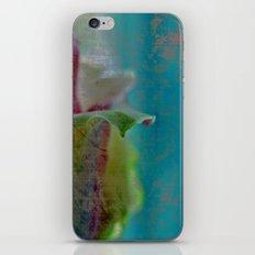 Green Rose iPhone & iPod Skin