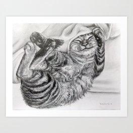 Cute Tabby Cat Art Print