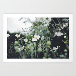 Botanicals Art Print