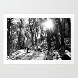 Transitando el bosque Art Print