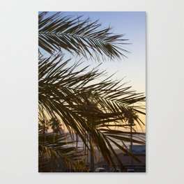 Summer Feels with Palms Canvas Print