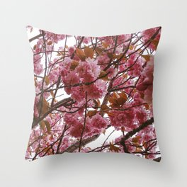 Cherry Blossom Trees Throw Pillow