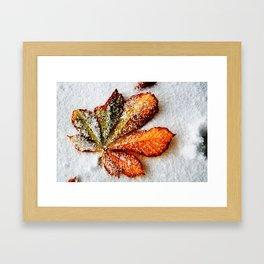 End of autumn Framed Art Print