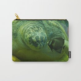 Big Turtle and Small Fish Kiss Carry-All Pouch