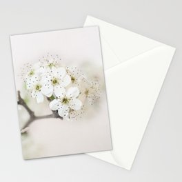 White Pear Stationery Cards