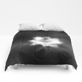 Botanica Obscura #6 Comforters