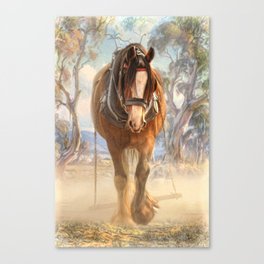 The Clydesdale Canvas Print