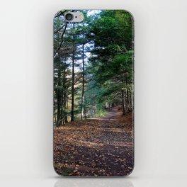 Grist Mill Autumn Trail iPhone Skin