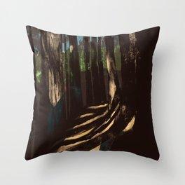 Path Through the Redwoods Throw Pillow