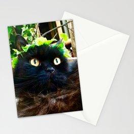 Divine King Pomponio Mela Stationery Cards