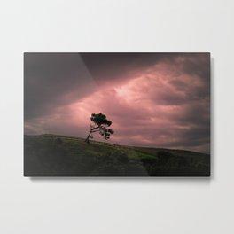 Hobbiton, New Zealand Metal Print