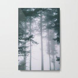 Moody Forest II Metal Print