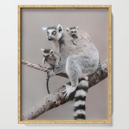 RINGTAILED LEMUR FAMILY by Monika Strigel Serving Tray