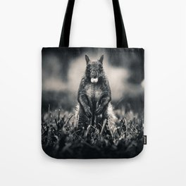 The Collector. Black and White Squirrel Photograph Tote Bag