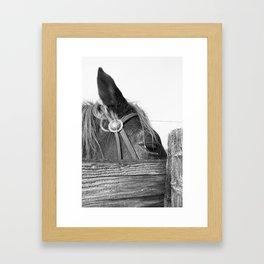 Ranch Six Framed Art Print