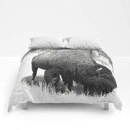 A Wild Guy Comforters