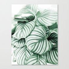 Long embrace Canvas Print