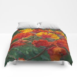 Red Bird of Paradise #1 Comforters