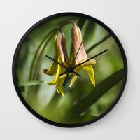 trout Wall Clocks featuring Trout Lily Flowers by Christina Rollo