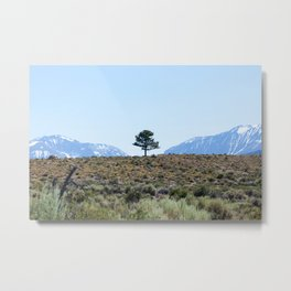 Resting Heart, Crowded Mind (Mono Lake Basin, California) Metal Print