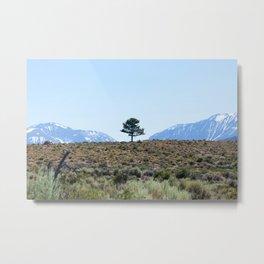 Resting Heart, Crowded Mind (Mono Lake Basin, California) Metal Print