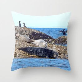 Seals resting on the Rocks Throw Pillow