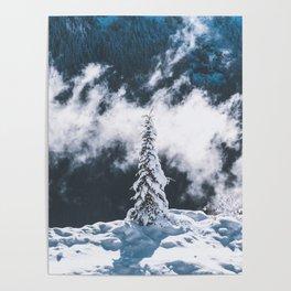 Lonely Alpine Tree Poster
