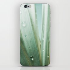 Ordinary Life iPhone & iPod Skin