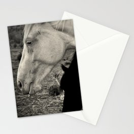 White and Black Mustangs Stationery Cards