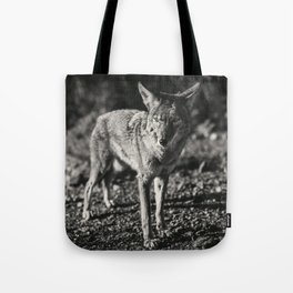 Coyote in Black and White Tote Bag