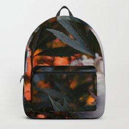 Sunset Gardens Backpack