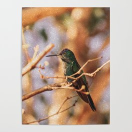 Bird - Photography Paper Effect 004 Poster