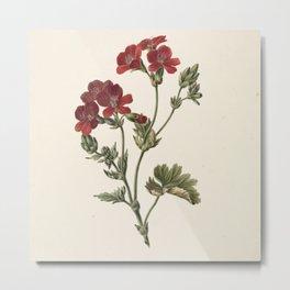 M. de Gijselaar - Red Flower (1830) Metal Print