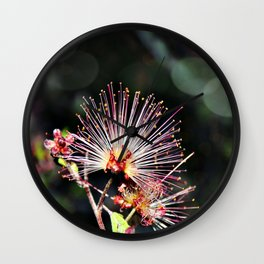 Nightblooms in Downtown Tucson 05-2017 Wall Clock