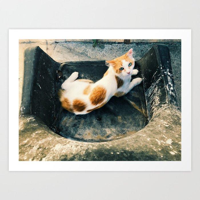 cat guardian Art Print