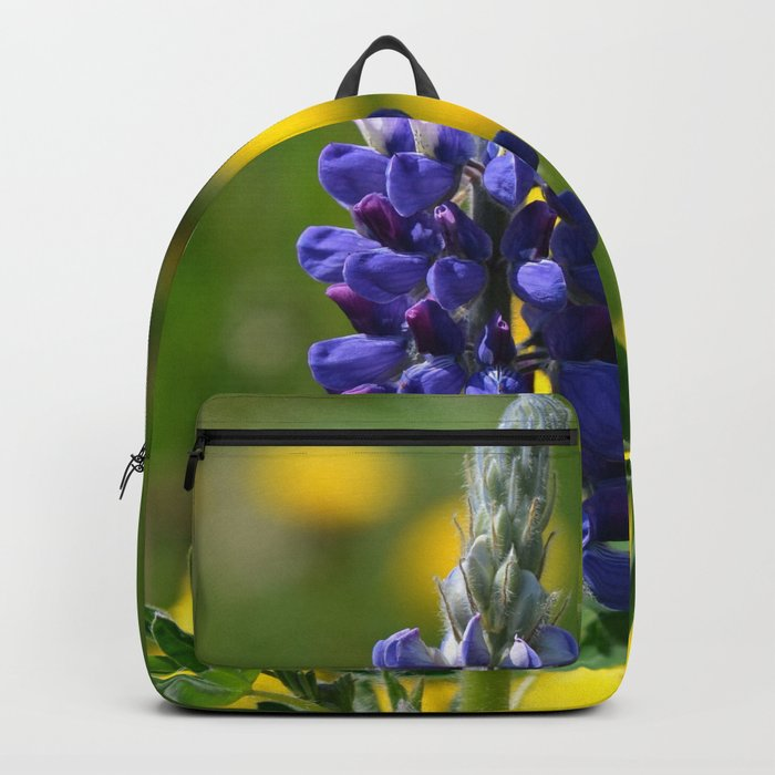 Stand-Alone Backpack