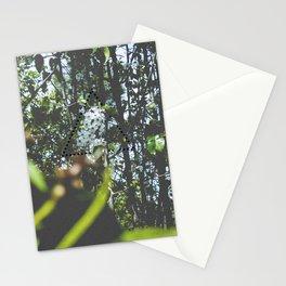 Four (Hazy Eyes) Stationery Cards
