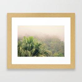 Rainforest Fog Framed Art Print