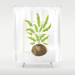 Bluestar Fern Illustration Shower Curtain