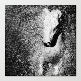 Of Winter Horse Canvas Print