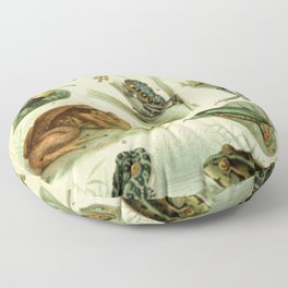 Frogs And Toads Floor Pillow