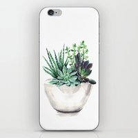 succulents iPhone & iPod Skins featuring Succulents by Bridget Davidson