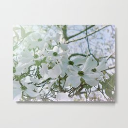 Dogwood 15 #easter Metal Print