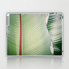 Sage + Red Laptop & iPad Skin