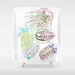 Silurian and Devonian Era Trilobites Shower Curtain