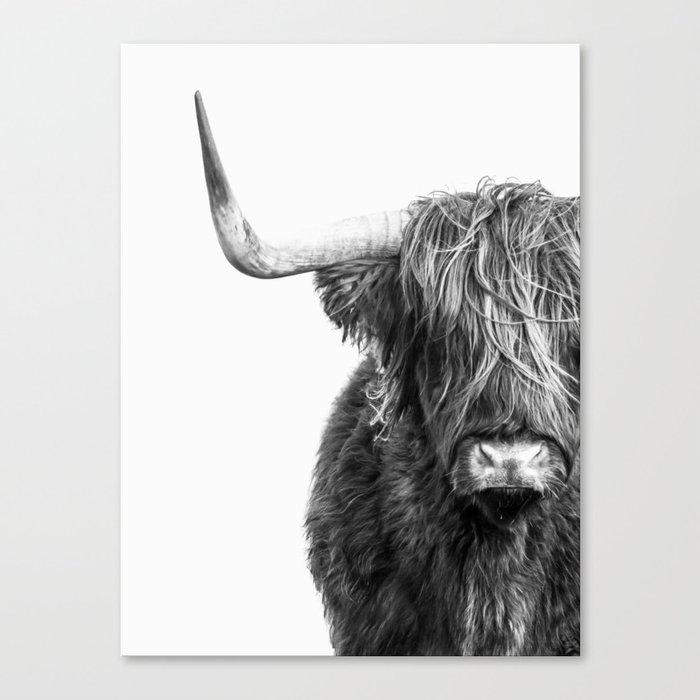 Highland Cow Portrait - Black and White Canvas Print
