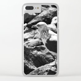Seagull on Rocks Clear iPhone Case